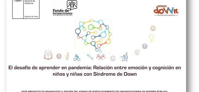 Adjudicación Proyecto Fondo de Fortalecimiento de Organizaciones de Interés Público FFOIP 2021